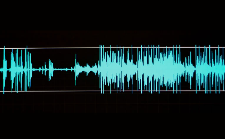 Nuance vocalizer 4pda