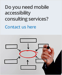 accesibility consulting